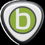 flexbit logo